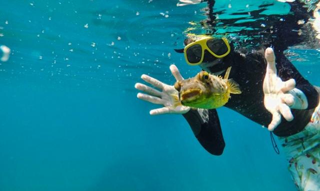 Cinco ativistas que trabalham para alertar sobre as ameaças e proteger a biodiversidade marinha
